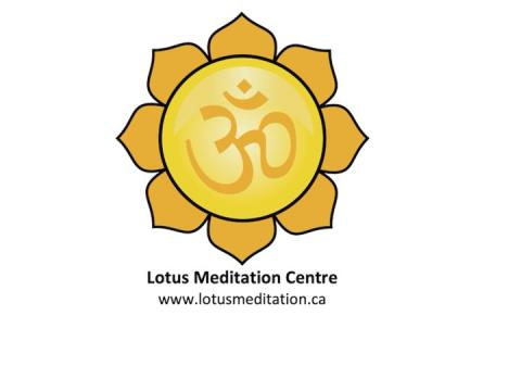 A bright yellow lotus flowerw with symmetrical petals. Lotus Meditation Centre